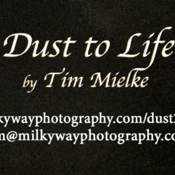 Dust to Life Contact Information