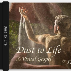 Dust to Life coffee table album